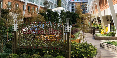 Central Park an Bord der Symphony of the Seas